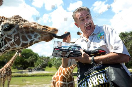 Ron Magill Zoo Miami director Ron Magill reacts to a lick by a giraffe, after 2012 NASCAR Sprint Cup champion Brad Keselowski, who was in town to promote the season-ending race at Homestead-Miami Speedway on Nov. 17, handed some memorabilia to Magill