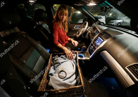 Mary Gardner On, veterinarian Dr. Mary Gardner prepares to drive away with Mike Kelley's euthanized cat, Andy, from his home in Newport Beach, Calif. The cat will be cremated and the ashes returned to Kelley. A few weeks earlier, 10-year-old Andy didn't greet Kelley at the door as usual and was soon diagnosed with liver disease, which meant euthanasia. It happened with the help of Gardner, co-founder of Lap of Love Veterinary Hospice, the country's first organized network of veterinarians who provide hospice and end of life care in the pet's home