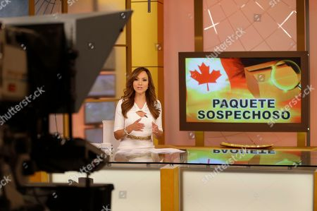 """Satcha Pretto Satcha Pretto reads the news on the Univision network morning show, """"Despierta America"""" (""""Wake Up America,"""") during a joint live broadcast with """"Good Morning America,"""" in Doral, Fla"""