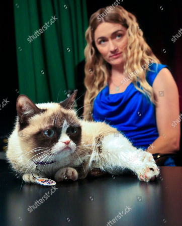 Tabatha Bundesen and her cat, Grumpy Cat, whose real name is Tardar Sauce, prepare for an interview on in New York. Bundesen says that Grumpy Cat's permanently grumpy-looking face is due to feline dwarfism