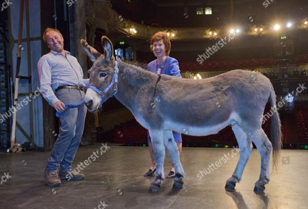 Ollie The Donkey Auditions For Carmen At The King's Theatre South Sea In Front Of Sandra Smith With Handler Paul Hunt.