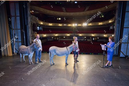 Donkeys Audition For Carmen In Front Of Sandra Smith (right) At The King's Theatre South Sea With Ollie (left) And Rusty (right) Handlers Paul And Tracey Hunt.