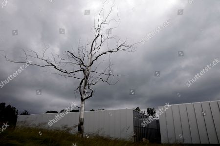 A stainless steel sculpture by Roxy Paine entitled Askew overlooks a building at the North Carolin Museum of Art in Raleigh, N.C