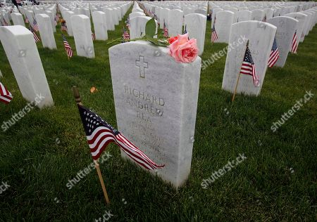 A pink rose rests on the headstone of Richard Andrew Rea, who served in the Army in the Persian Gulf War, at the Sacramento Valley National Cemetery in Dixon, Calif., on Memorial Day