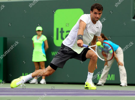 Stock Image of Andy Murray, Grigor Dimitrov Grigor Dimitrov, of Bulgaria, returns the ball to Andy Murray, of Great Britian, during the Sony Open Tennis tournament in Key Biscayne, Fla