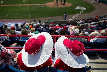 Editorial picture of Tigers Nationals Spring Baseball, Viera, USA