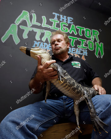 Bob Barrett, owner of The Alligator Attraction poses with one of his alligators in Madeira Beach, Fla. Instead of bounce houses and ponies, some Florida parents are opting for more exciting activities at their kid's birthday parties: alligators. Barrett says the parties are totally safe, because the alligators mouths are taped shut