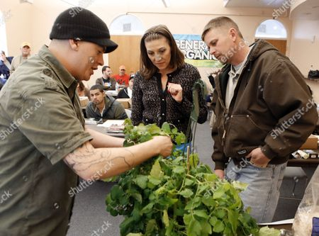 """Stock Image of Ted Smith, Ginger Grider, Heath Grider On, instructor Ted Smith, left, shows Ginger and Heath Grider how to cut and plant a section of a tomato plant during class at THC University at the Tivoli in Denver. Marijuana can be grown from seed, or from a clipping off a """"mother"""" marijuana plant. Clones, as the clippings are called, grow faster and produce smokeable marijuana much more quickly than seeds. But seeds can be worth the wait, producing hardier marijuana"""