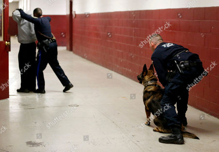 Eric Petersen, Michael Oconnell, Allen Williams, Ali Jersey City Police Department officer Eric Petersen, right, holds on to his police dog, Ali, as Camden Police Officer Allen Williams, second from left, apprehends JCPD officer Michael O'Connell during a training exercise at the New Jersey Department of Public Works, in Jersey City, N.J. Officers from various agencies are participating in the police dog class, which graduates on Feb. 8