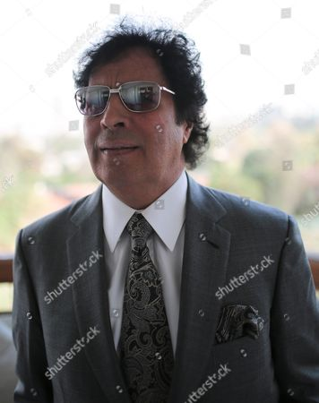 Ahmed Qaddaf al-Dam, cousin of Libya's former president Muammar Gaddafi, poses for a photo during an interview at his apartment, in Cairo, Egypt