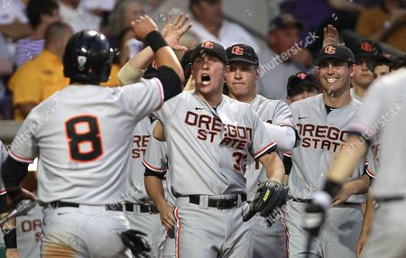 Stock Photo of Michael Conforto Oregon State's Michael Conforto (8) is greeted by teammates after scoring on an RBI single by teammate Ryan Dunn in the third inning of an NCAA college baseball tournament regional game against LSU in Baton Rouge, La