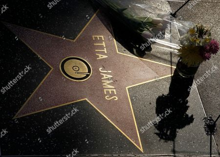 """Flowers honor the star of Etta James, the seminal rhythm and blues singer, on her star on the Hollywood Walk of Fame in Los Angeles on Jan. 20, 2012. James, the feisty rhythm and blues singer whose raw, passionate vocals anchored many hits and made the yearning ballad """"At Last"""" an enduring anthem for weddings, commercials, died in San Bernandino, Calif. James had been suffering from dementia and kidney problems, and was battling leukemia. She was 73"""