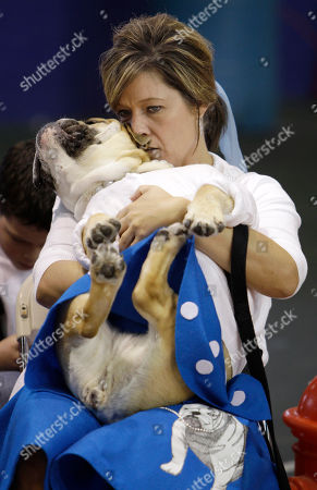 Nancy Brown, of Johnston, Iowa, kisses her bulldog Lucy Brown during judging at the 32nd annual Drake Relays Beautiful Bulldog Contest, in Des Moines, Iowa. Lucy Brown was later crowned the winner of the contest. The pageant kicks off the Drake Relays festivities at Drake University where a bulldog is the mascot