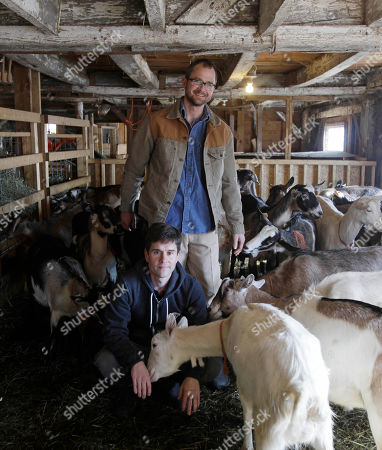 Stock Picture of Brent Ridge, Josh Kilmer Purcell Dr. Brent Ridge, front, and Josh Kilmer-Purcell, of Planet Green's The Fabulous Beekman Boys, pose with goats at their Beekman Farm in Sharon Springs, N.Y., on