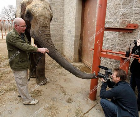 Stock Photo of Willie Theison, Joe Appel Willie Theison, Pittsburgh Zoo & PPG Aquarium elephant manager, left, works with Callee, a 10-year-old male African Elephant, who seems interested in photographer Joe Appel, right, in Pittsburgh. Callee will be moving to join the male herd of elephants at the Birmingham Zoo's new elephant yard and barn--Trails of Africa