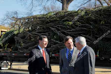 Stock Picture of John Barrasso, Michael Enzi, Stephen T. Ayers Sen. John Barrasso, R-Wy., left and Sen. Michael Enzi, R-Wy., right, talk with the Archictect of the Capitol Stephen T. Ayers, as the Capitol Christmas tree arrives to be placed on the West Front of the US Capitol in Washington . The 67-foot tree was cut down earlier this month in the Bridger-Teton National Forest in northwest Wyoming