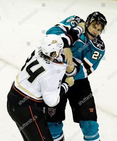Editorial picture of Duck Sharks Hockey, San Jose, USA