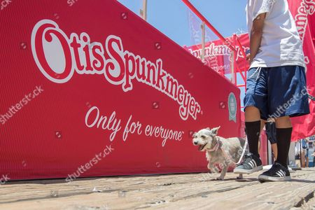 IMAGE DISTRIBUTED FOR OTIS SPUNKMEYER - Otis Spunkmeyer, a beloved sweets brand since 1977, launches a brand new line of individually wrapped sweet treats with a lively celebration at the Santa Monica Pier over Fourth of July Weekend, on Saturday, July 2, 2016, in Santa Monica, Calif. At the July 2nd, 2016 launch event, the new snacks were distributed to thousands of people.