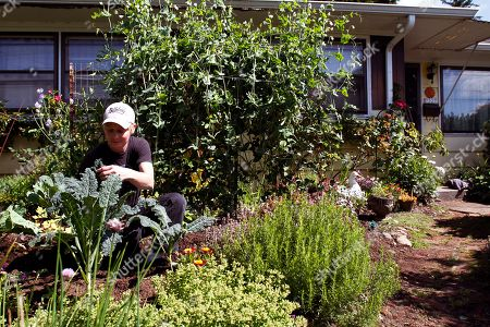 """Robyn Streeter Gardening Backyard Farms Robyn Streeter works in a residential front yard vegetable and flower garden she helped create in Portland, Ore., . Your Backyard Farmer began in 2006 when Streeter and Donna Smith were growing weary of driving through the city's outskirts looking for affordable land to farm. The thought struck them: """"Why aren't we bringing food to the people"""