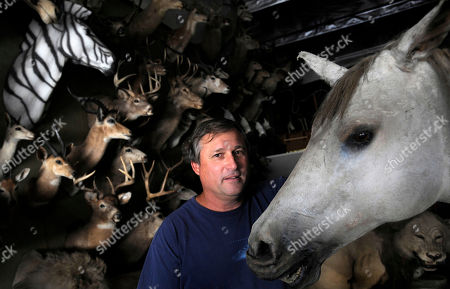 Editorial picture of Pets Trigger's Taxidermist, Burbank, USA