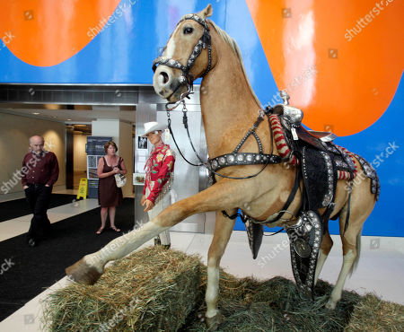 """Stock Image of Trigger Jr The preserved remains of movie cowboy Roy Rogers horse """"Trigger Jr."""" are displayed in the lobby of Christies auction house in New York, . An upcoming Manhattan auction will feature the belongings of movie cowboy Roy Rogers and his wife Dale Evans - including the preserved remains of his faithful companion, Trigger"""