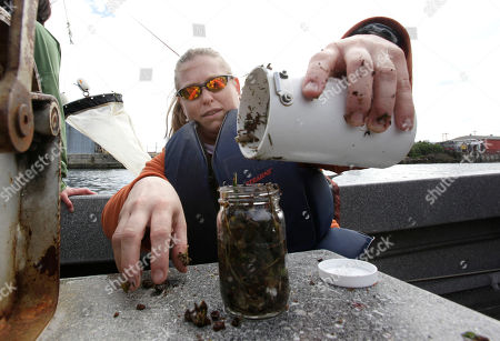 Stock Picture of Julie Masura Julie Masura, a researcher with the University of Washington-Tacoma environmental science program, empties a collection filter that was pulled through the Thea Foss Waterway, in Tacoma, Wash. Masura and other scientists are developing methods to measure the level of microplastics -- tiny plastic particles no larger than a ladybug -- in seawater and sediments by sampling the waters of Puget Sound