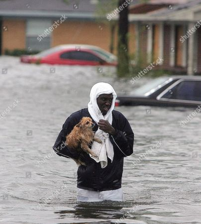 "FILE **Jonathan Harvey wades through flood waters after rescuing his dog ""Cuddles"" from his flooded home after Hurricane Katrina struck the Gulf Coast in Gulfport, Miss.. Everyone remembers the pets lost in New Orleans during Hurricane Katrina. Or worse, the pet owners who chose to stay in harm's way rather than leave their animals. Maryland and other states are taking a new look at what they'd do with pets and livestock in case of disaster"