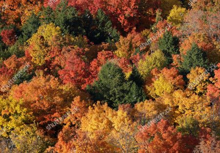 Autumn colors are seen at John Boyd Thacher State Park, in Voorheesville, N.Y