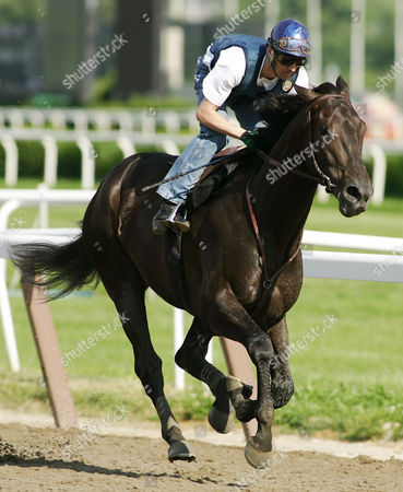 Exercise rider John Byrne rides Rock Hard Ten during his morning workout at Belmont Park in Elmont, New York . The Belmont Stakes will be run Saturday, June 5, 2004