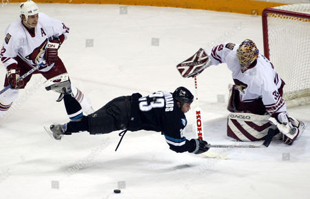 HULSE DIMITRAKOS The San Jose Sharks' Niko Dimitrakos goes flying after being tripped up by the Phoenix Coyotes' Cale Hulse during the first period, in San Jose, Calif. Brian Boucher is in goal for the Coyotes. Hulse got two penalty minutes for the tripping