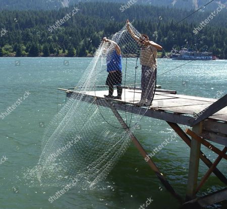 GARDEE MILLER Tony Gardee, left, and Bobby Miller of White Swan, Wash., check one of the platform set nets for chinook or steelhead salmon in Cascade Locks, Ore., . At $2 a pound, fishermen are selling their stocks as soon as they can deliver them in the Columbia River town