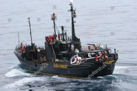 Sea Shepherd Organisation ship 'Farley Mowat', looking for Japanese whaling fleet. Southern Ocean.