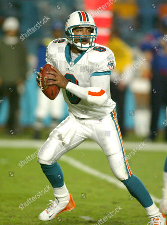 Stock Photo of Miami Dolphins quarterback Ray Lucas drops back to pass in the second half against the Balitmore Ravens. The Dolphins won 26-7, in Miami Fla
