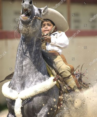 Stock Photo of FRANCO Daniel Franco, 8, stops his horse in a horse-reining event during a charreada at the San Antonio Charro Ranch in San Antonio, . The charreada, or Mexican style rodeo, began in the 16th century