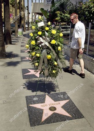 "Stock Image of A passerby looks at a floral tribute at the star honoring actor Rod Steiger on the Hollywood Walk of Fame, in Los Angeles' Hollywood district. Steiger, who in 1954 played Marlon Brando's mob-connected brother in ""On the Waterfront"" and won the 1967 Oscar for best actor for ""In the Heat of the Night,"" died Tuesday at age 77 of pneumonia and kidney failure at a Los Angeles-area hospital, according to his publicist, Lori De Waal"
