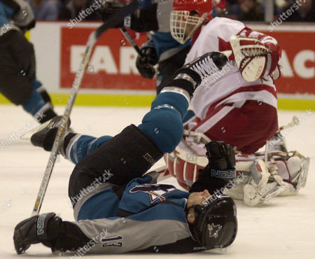 HARVEY HASEK San Jose Sharks right wing Todd Harvey, front, hits the ice after colliding with Detroit Red Wings goalie Dominik Hasek, rear, in the second period, at Joe Louis Arena in Detroit