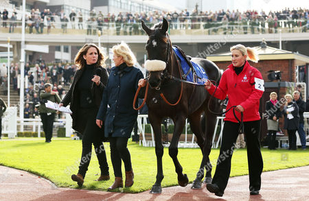 Alice Plunkett interviewing in the parade ring during The Showcase meeting at Cheltenham Racecourse, Cheltenham on 21st October 2016