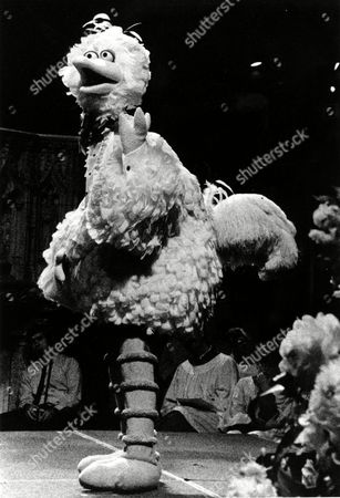 "BIG BIRD Big Bird, a character played by Caroll Spinney, sings ""It's Not Easy Being Green"" during the memorial service for Jim Henson, creator of the ""Muppets"", at New York City's Cathedral of St. John The Divine on"