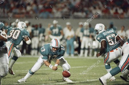 Stock Image of Miami Dolphin quarterback Dan Marino falls on the football, after losing it during action against the Chicago Bears in Miami, Fla., . Marino suffered a dislocated finger in this play and will be sidelined four weeks. Dolphin Dwight Stephenson is at right