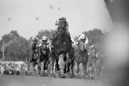 Angel Cordero Spend a Buck, with Angel Cordero Jr. up, leads the field to the finish at Churchill Downs during the 111th running of the Kentucky Derby in Louisville