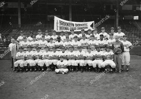 Snider, Di The Brooklyn Dodgers, National League champions, pose for a team photo, at Ebbets Field, Brooklyn. Seated on ground: Charlie Di Giovanna. Seated in first row, from left: George Shuba, Andy Pafko, Pee Wee Reese, George Pfister, Cookie Lavagetto, Chuck Dressen, Jake Pitler, Billy Herman, Billy Cox, Roy Campanella, Carl Furillo, Dr. Harold Wendler. Second row: John Griffin (in T-shirt), Lee Scott (in suit), Jim Hughes, Gil Hodges, Ben Wade, Johnny Rutherford, Jackie Robinson, Clem Labine, Clyde King, Chris van Cuyk, Preacher Roe, Joe Black, Ralph Branca, Rocky Nelson. Last row: Joe Landrum, Ed Amoros, Rube Walker, Carl Erskine, Bobby Morgan, Tommy Holmes, Rocky Bridges, Billy Loes, Duke Snider, Dick Williams, Ken Lehman, Ronnie Negray, Steve Lembo, Ray Moore