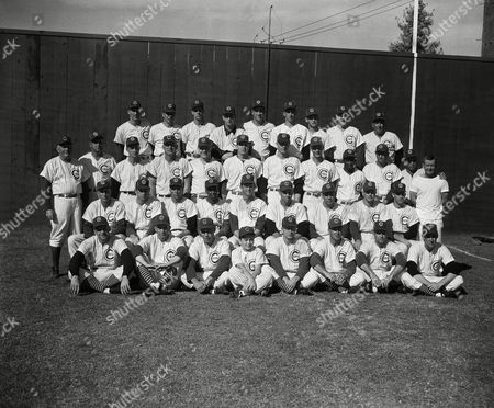 The Chicago Cubs baseball team are shown at their spring training camp in Mesa, Arizona, . From left to right, bottom row: Robert Morgan, John Gorly, John Briggs, Tom Munzel, Robert Will, Robert Adams, Darius Hillman, and Gene Fodge. Second row: Bert Singleton, Omar Lown, Richard Drott, Ernie Banks, Ray Walls, Frank Ernaga, Jack Littrell, Elvin Tappe, Robert Speake, and Al Schueneman. Third row; Rogers Hornsby, Bob Scheffing, Chuck Tanner, Walter Moryn, Jim Bolger, Gordon Massa, Jim Brosnan, Jerry Kindall, Tony Taylor, Ed Mayer, and George Myatt