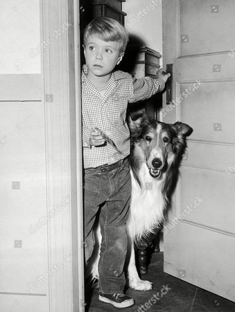 """Jon Provost Jon Provost, a wealthy television star at the age of nine, plays second fiddle to the dog beside him in character in Los Angeles on . That's Lassie, and Jon plays the part of Tim, her master. Just starting his third year with the series (CBS), Jon signed a contract which will put him in the four-figures-a-week salary bracket if all options are exercised. But Jon says he doesn't know where all the money goes. """"I only get 50 cents a week allowance,"""" he says"""
