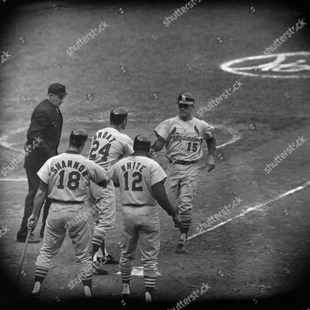 Tim McCarver, Dick Groat, Bill White, Mike Shannon Tim McCarver (15) is mitted at home plate by shortstop Dick Groat (24) and Bill White (12), both of whom scored ahead of him on a 10th inning three-run homer in the fifth game of the World Series with the St. Louis Cardinals at Yankee Stadium in New York, . Blow gave the Cards a 5-2 victory over the Yankees and a 3-2 lead in the games. Mike Shannon (18) is pictured at left