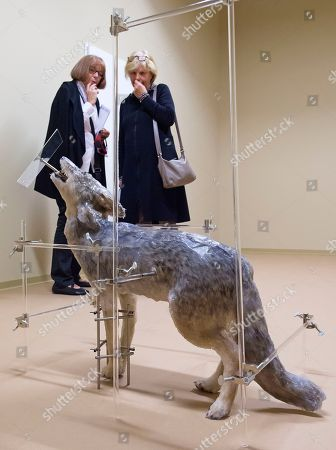 Editorial image of Germany Exhibition Contemporary Art, Kassel, Germany