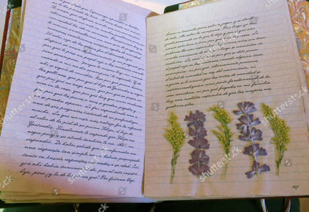 """Dried flowers and herbs a pressed inside the original manuscript of Laura Esquivel's """"El diario de Tita"""" at a press conference in Mexico City on .Esquivel presented """"El diario de Tita"""" a book with new aspects from her popular novel """"Como agua para chocolate."""" The author said she plans to convert the story into a trilogy. (AP Photo/Berenice Bautista) Esquivel presented """"El diario de Tita"""" a book with new aspects from her popular novel """"Como agua para chocolate."""" The author said she plans to convert the story into a trilogy"""