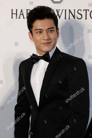Stock Picture of Elvis Han Chinese actor Elvis Han poses on the red carpet during the fundraising gala organized by amfAR (The Foundation for AIDS Research) in Hong Kong