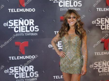 "Mexican actress Vanessa Villela poses for photos on the red carpet for the fourth season of Telemundo's ""El senor de los cielos"" in Mexico City"