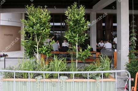 Stock Image of Staff work at the site for a new popup restaurant Noma Australia in Sydney, Australia, . Danish chef Rene Redzepi will open Noma Australia at Barangaroo on Australia Day 2016 and run for 10 weeks with all 5500 seats pre sold at a cost of $485 per person