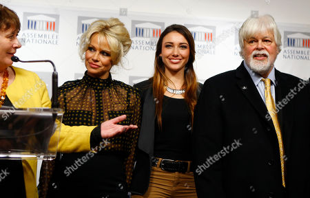 Stock Photo of French Deputy Laurence Abeille, left, introduces, from left, Pamela Anderson, actress and animals rights defender, Former Miss France Delphine Wespiser, and Founder of Sea Shepherd Paul Watson during a news conference at the French National Assembly to protest the force-feeding of geese used in the production of foie gras, in Paris, France